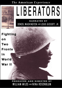 Liberators: Fighting on Two Fronts in World War II (DVD)